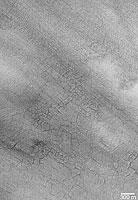 Southern Hemisphere Polygonal Patterned Ground