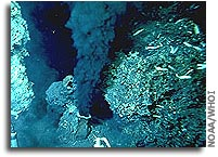 UCSB scientists probe sea floor venting to gain understanding of early life on Earth