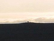 HMP image