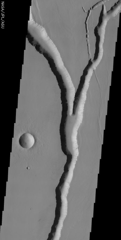 Medium image for 20040203A