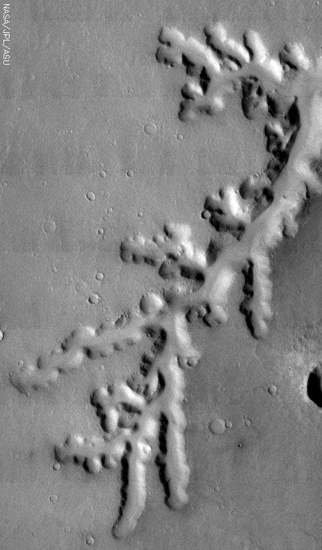 Medium image for 20040225A