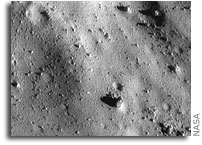 Seismic Shaking Erased Small Impact Craters on Asteroid Eros