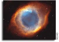 Majority of Planetary Nebulae May Arise from Binary Systems
