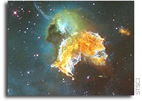 Hubble Image: Supernova Remnant Menagerie