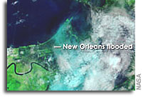 NASA Terra Satellite Image of New Orleans Flooding