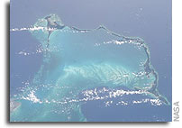 NASA satellite sees ocean plants increase, coasts greening