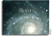 X-Rays Signal Presence of Elusive Intermediate Mass Black Hole