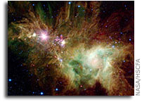 A Holiday Gift from Space: Spitzer Photographs Christmas Tree Cluster