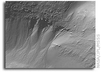 Mars Picture of the Day: Gullied Recesses