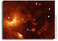 Grain Growth in Orion Nebula Protoplanetary Disks