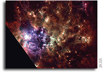 AKARI's view of Large Magellanic Cloud � star formation at work
