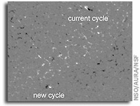 Onset of Next Solar Activity Cycle Observed