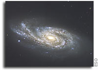Island Universes with a Twist - VLT Images of Perturbed Galaxies