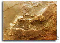 Traces of the martian past in the Terby crater