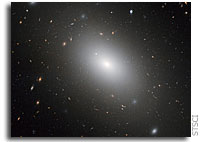 Gargantuan galaxy NGC 1132: a cosmic fossil?