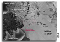 Satellite Imagery Shows Fragile Wilkins Ice Shelf Destabilized