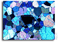 Prussian blue linked to the origin of life