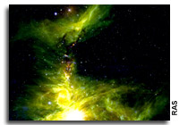 Great Nebula of Orion's Chaotic and Overcrowded Stellar Nursery