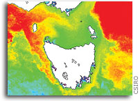Highest-ever Winter Water Temperatures Recorded Off of Tasmania