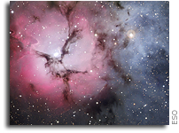 Trifid Triple Treat