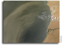 Image: Dust Plumes off the West Coast of Africa