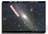 Discovery of New Stellar Streams in Andromeda Galaxy