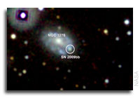 Newborn Black Holes May Add Power to Many Exploding Stars