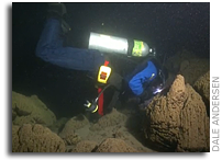 Video: A Night Dive in Pavilion Lake, British Columbia