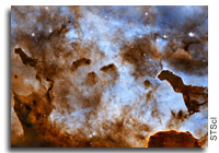 Cosmic Ice Sculptures in the Carina Nebula