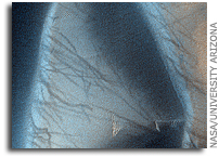 NASA MRO HiRISE Image of Mars: Spectacular Richardson Crater Dunes