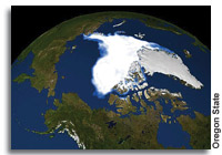 Loss of reflectivity in the Arctic doubles estimate of climate models