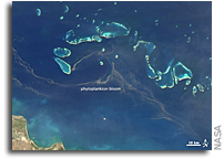 Photo: Phytoplanton Bloom in the Great Barrier Reef As Seen From Space