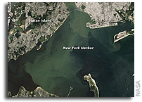 Image: Hurricane Irene's Sediment in New York Harbor As Seen By Landsat
