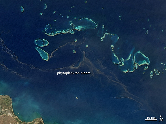 Photo Phytoplanton Bloom In The Great Barrier Reef As Seen