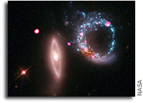 Giant Ring of Black Holes
