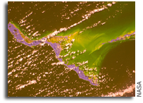 Photo: Bahamas - In Infrared - As Seen From Orbit