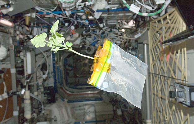 astronaut space diary - photo #27