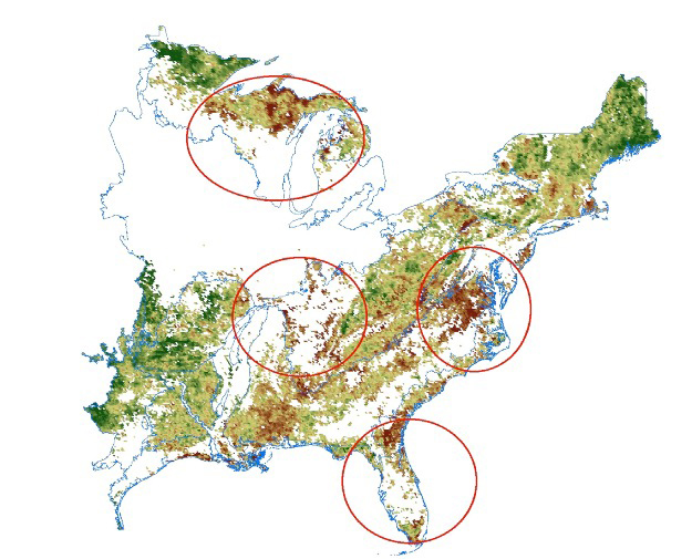NASA Eyes Declining Vegetation in the Eastern United States from ...