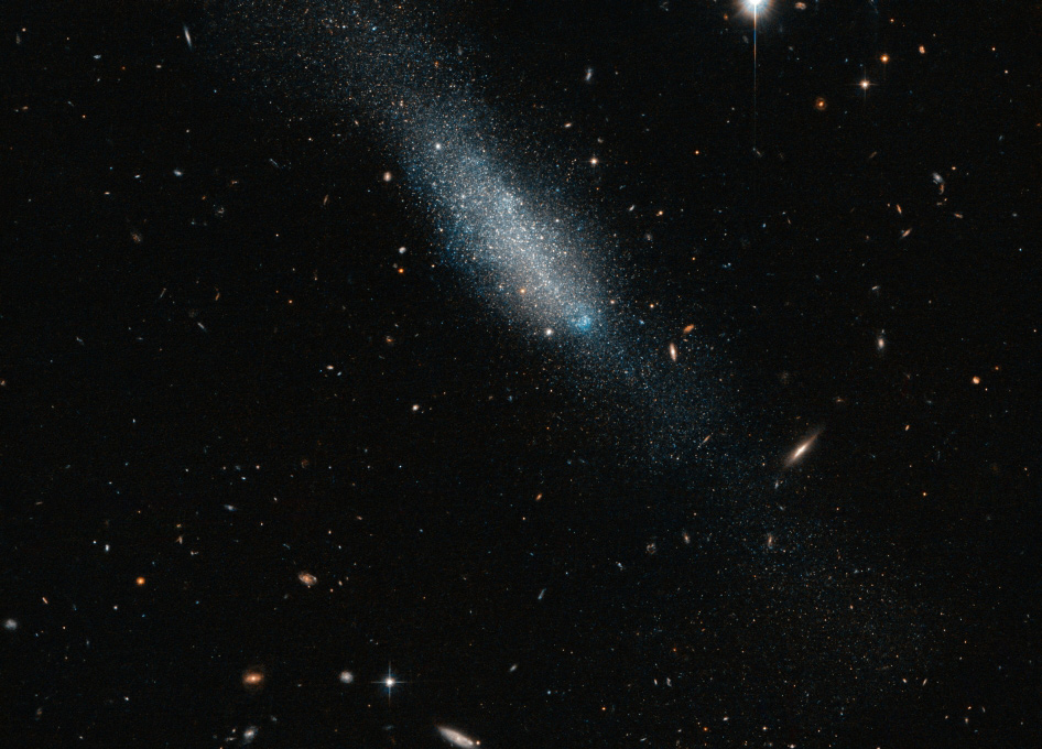 Hubble Sees Cosmic Sprinkling of Blue and Gold - SpaceRef