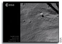 Philae's Descent on Comet 67P/Churyumov-Gerasimenko: The Director's Cut