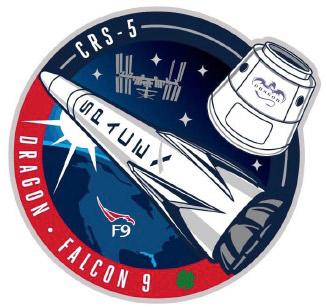falcon 9 dragon logo - photo #26