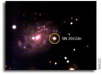 Japan OISTER Collaboration Uncovers the Origin of Extraordinary Supernovae
