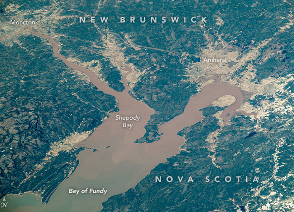 NASA Earth Observatory: Bay of Fundy