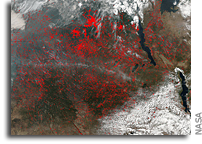 Orbital View Of Numerous Fires in Central Africa