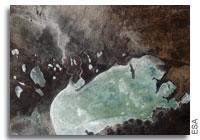 Earth from Space: Etosha, Namibia