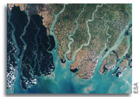 Earth from Space: Sundarbans, Bangladesh