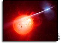 New Type of Exotic Binary Star