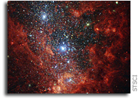 Hubble View Of Star Formation in NGC 1569