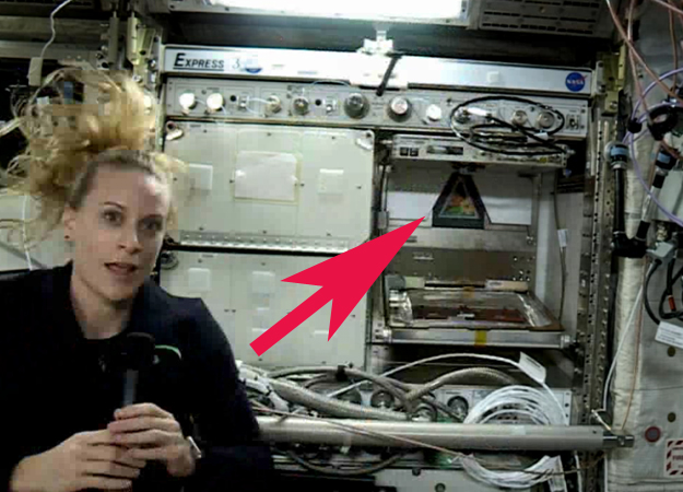 http://images.spaceref.com/news/2016/iss.veggie.jpg