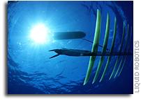 Liquid Robotics' Ocean Robots Surpass 1 Million Nautical Miles at Sea